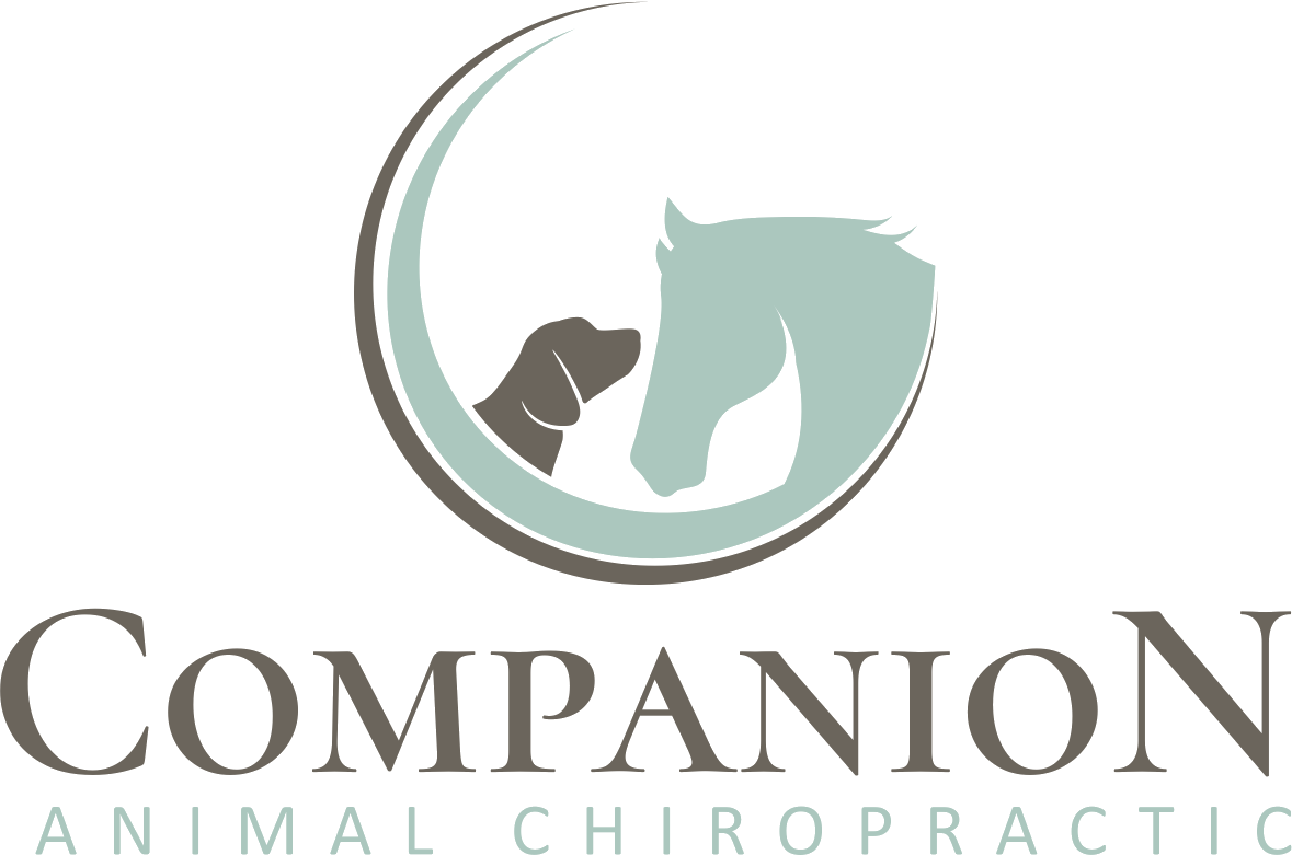 Companion Animal Chiropractic